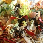 Composting food waste mixed with horse manure is an ideal blend for fast composting in the commercial sized BioReactor.